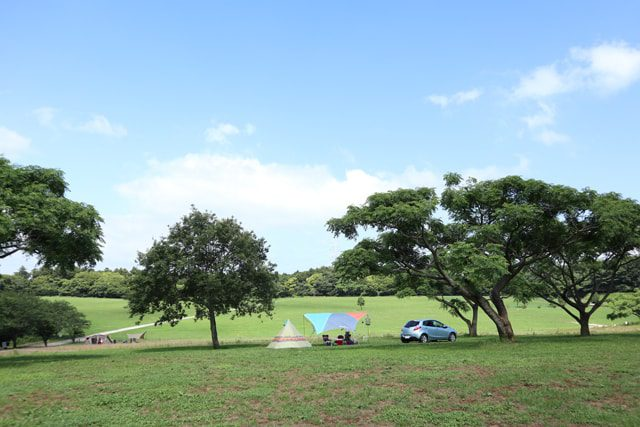 の キャンプ 場 オート まき 天気 森 ば